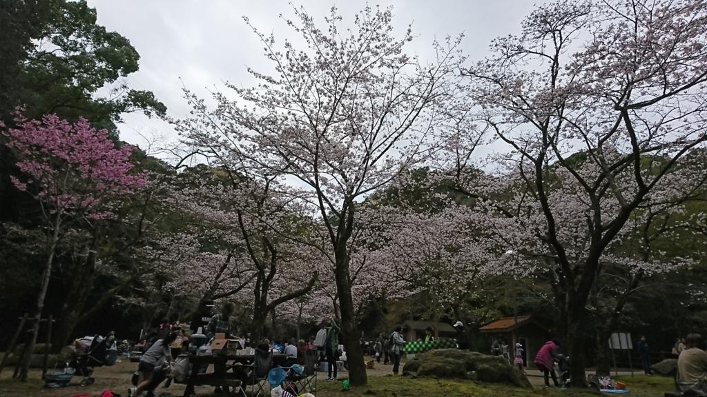 f:id:kimotokanata:20180318132002j:plain