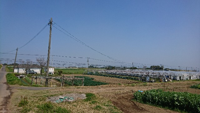 f:id:kimotokanata:20180325230137j:image
