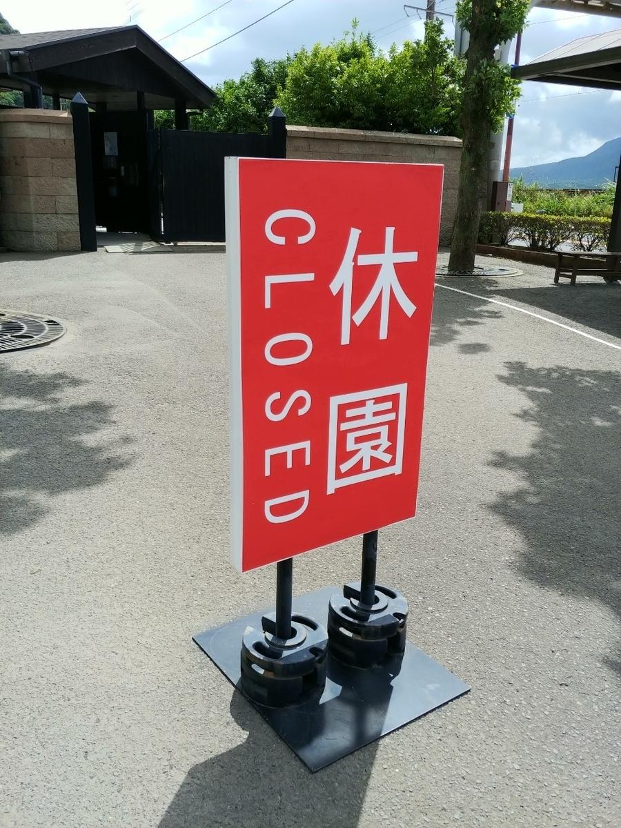 f:id:kimotokanata:20200614172648j:plain