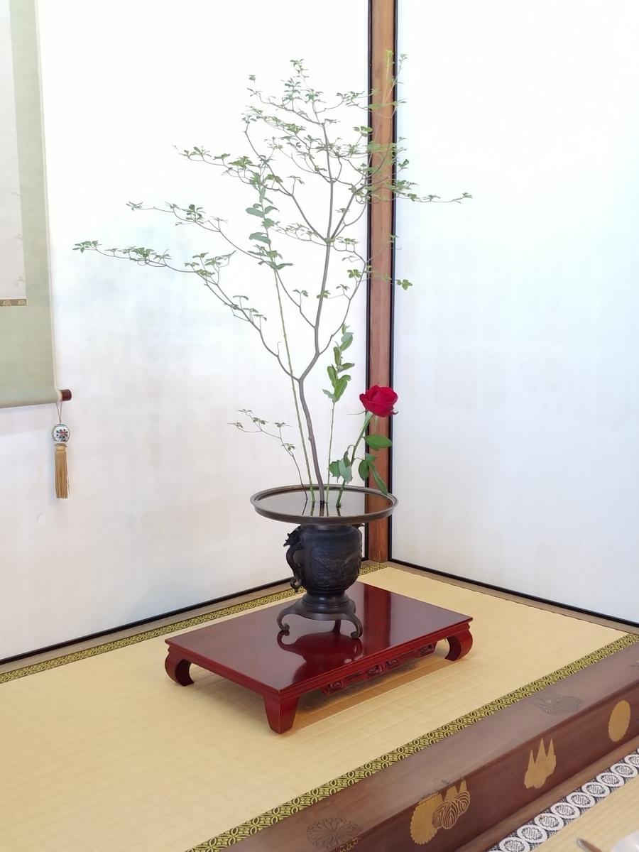 f:id:kimotokanata:20200614211926j:plain