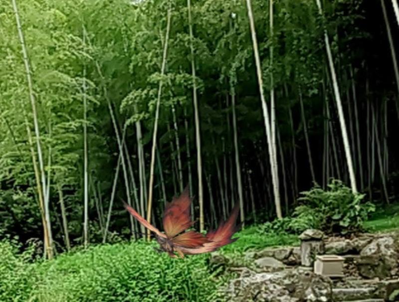 f:id:kimotokanata:20211011113122p:plain