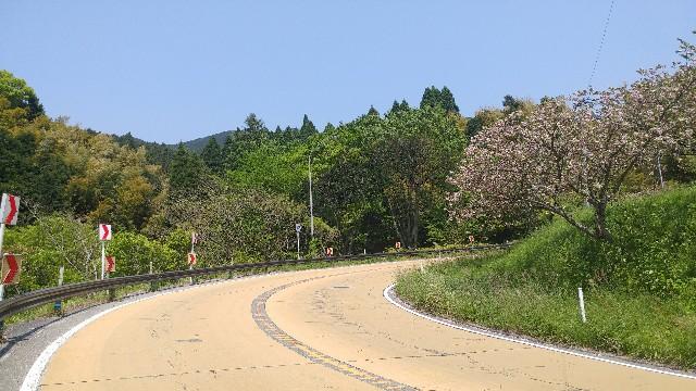 f:id:kimuchan0811:20170501192940j:image