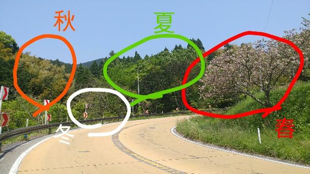 f:id:kimuchan0811:20170501205151j:image