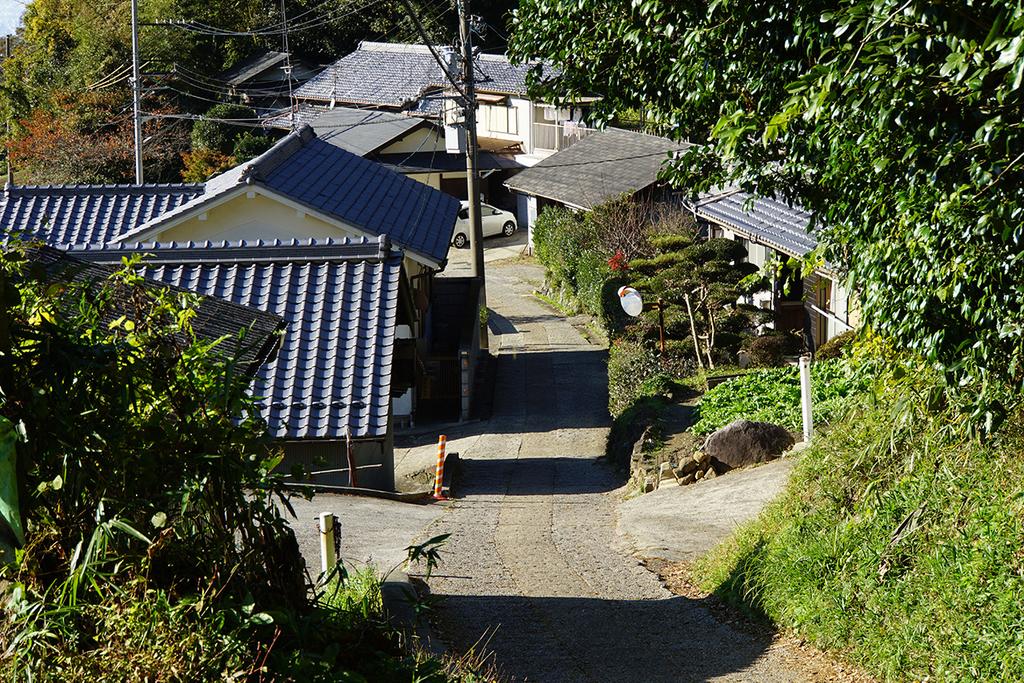 f:id:kimura_khs:20181218233503j:plain