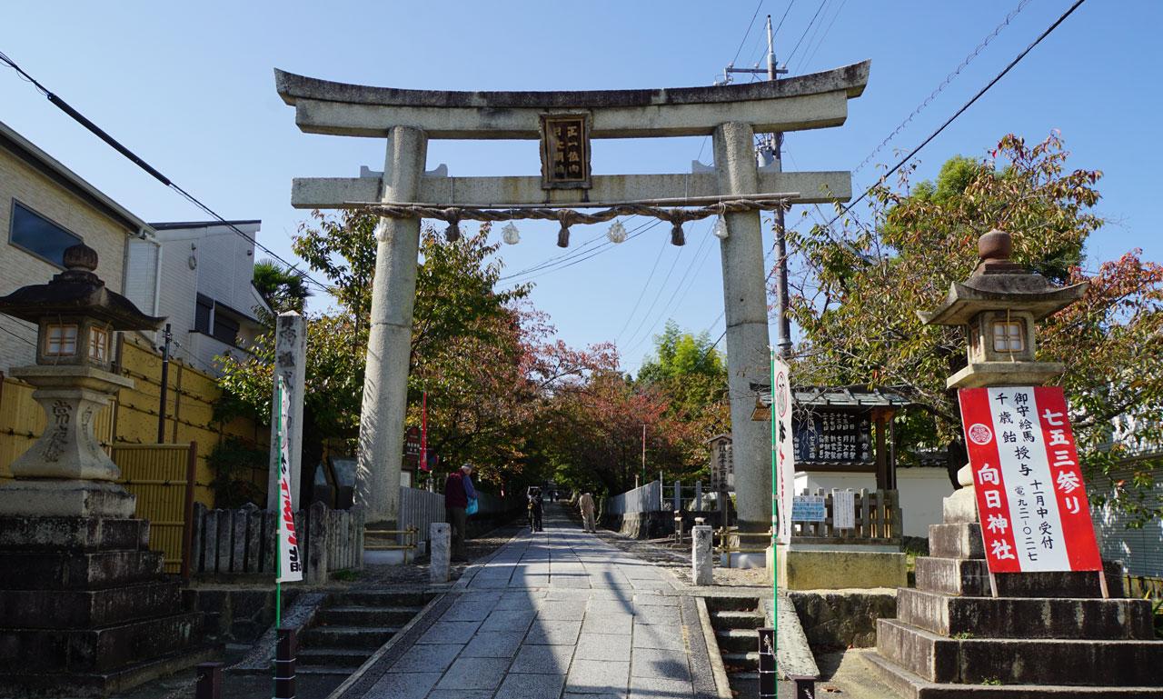 f:id:kimura_khs:20201206182155j:plain