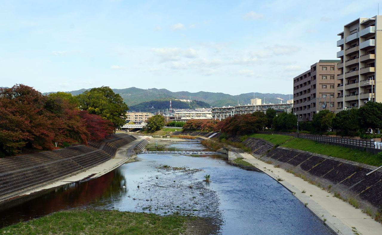 f:id:kimura_khs:20201206182826j:plain