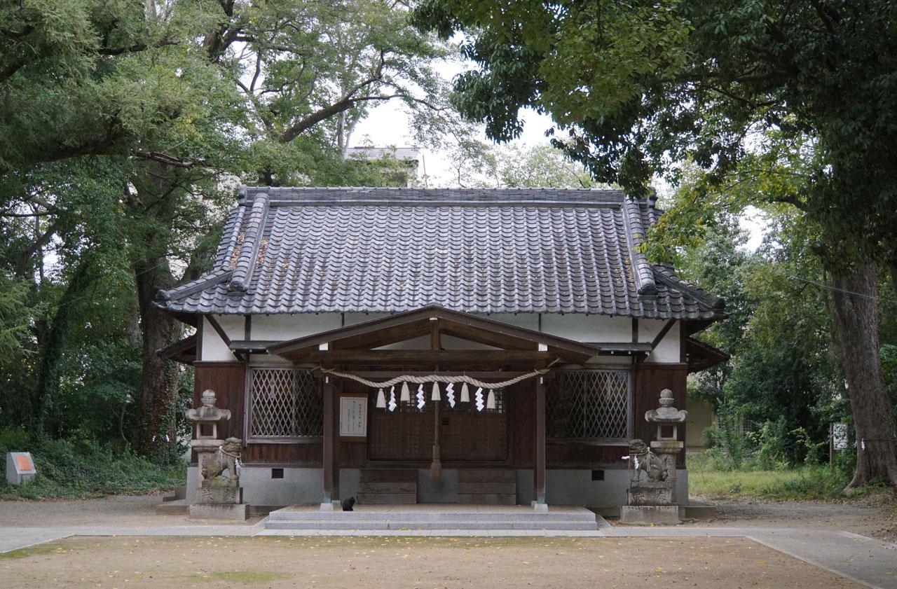 f:id:kimura_khs:20201206183306j:plain