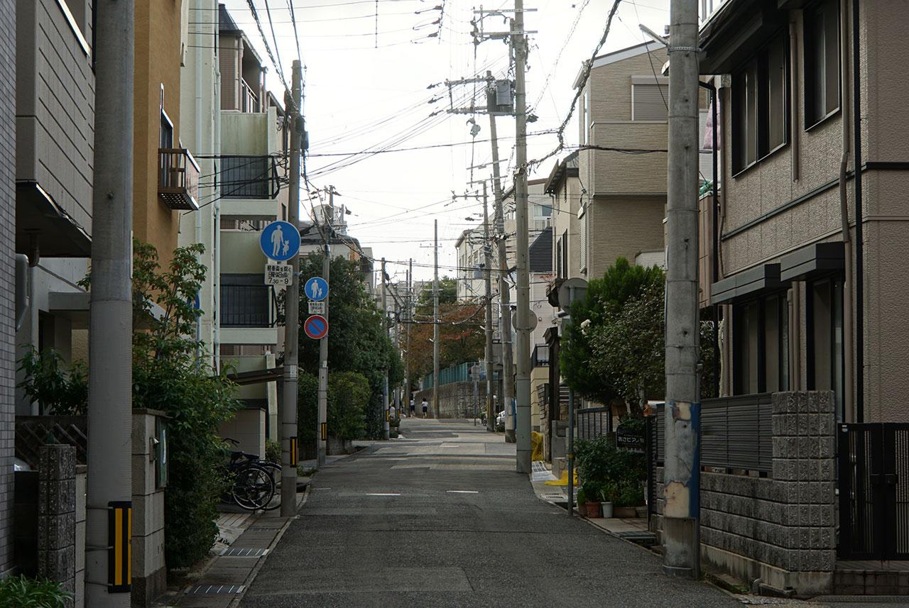 f:id:kimura_khs:20201206184125j:plain