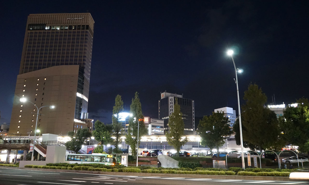 f:id:kimura_khs:20201206184418j:plain