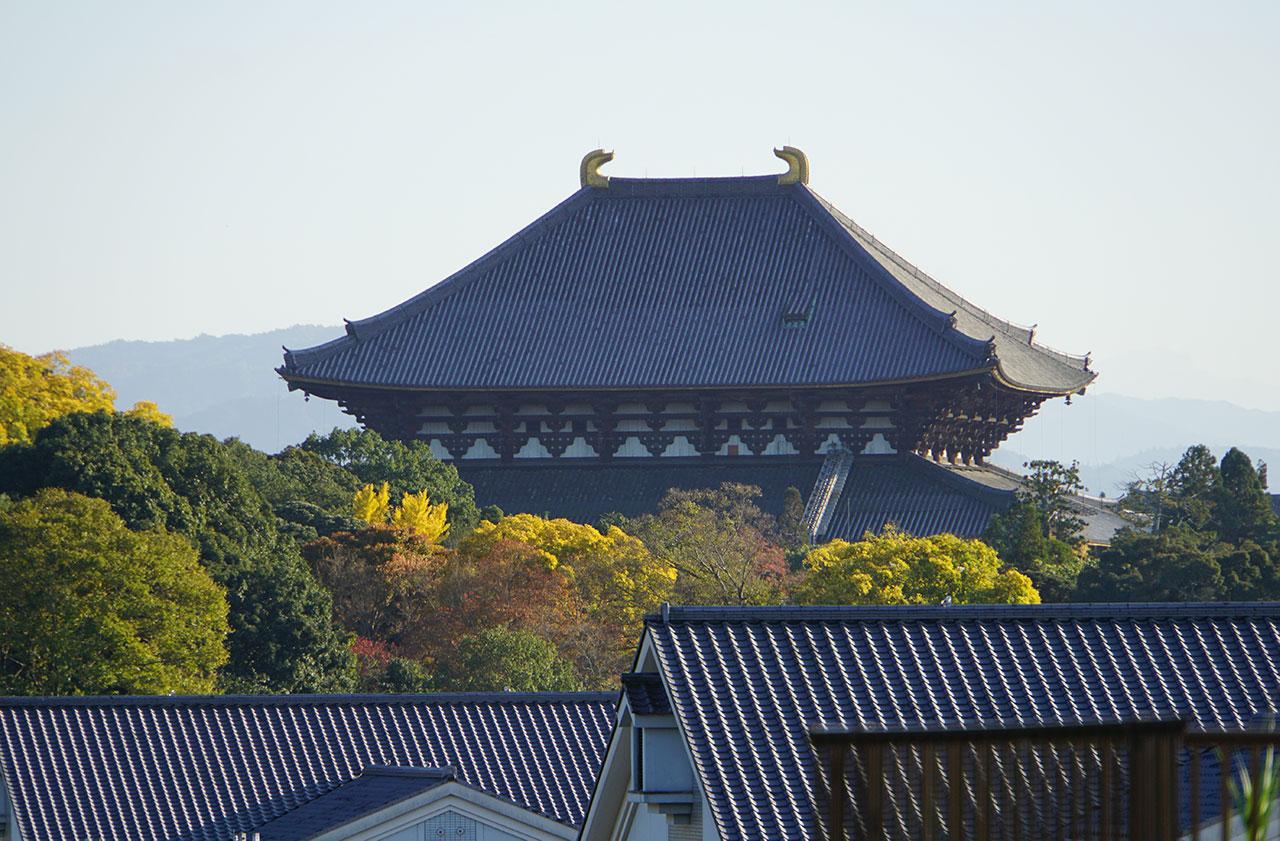 f:id:kimura_khs:20210110170339j:plain