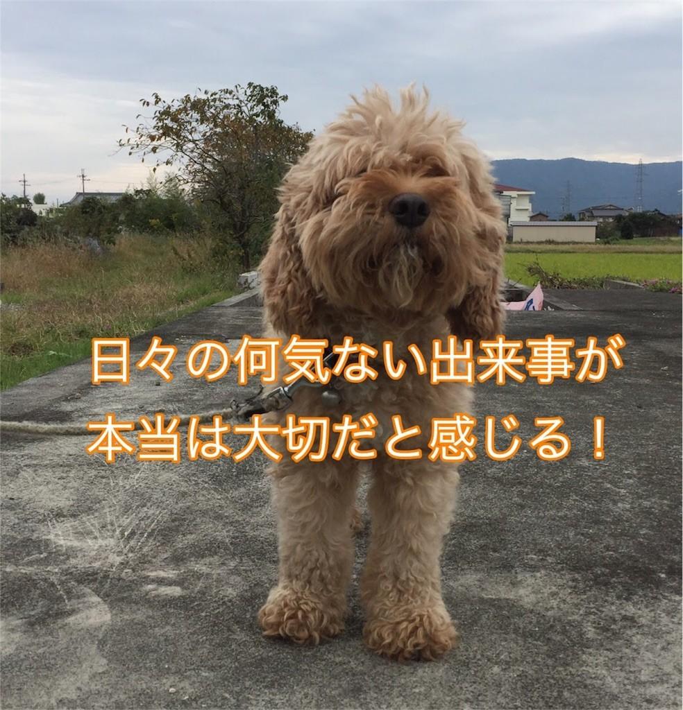 f:id:kimurakatsunori:20161031223200j:image