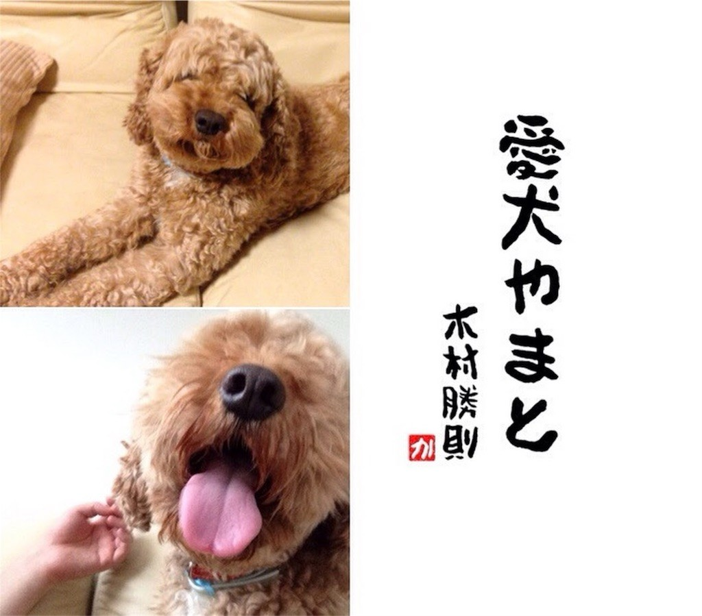 f:id:kimurakatsunori:20170212215646j:image