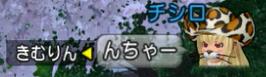 f:id:kimurin765:20200124050655p:plain