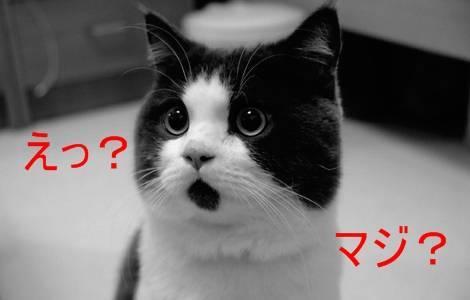 f:id:kimurou:20200806212841j:plain