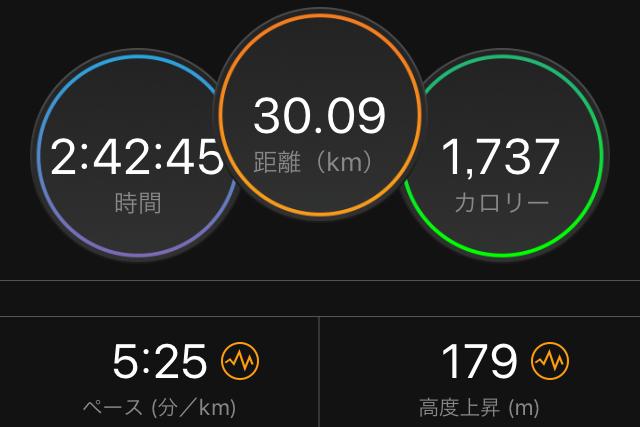 f:id:kina_tomo_yu:20190201130251j:plain