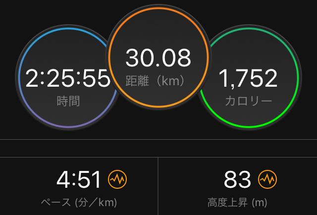 f:id:kina_tomo_yu:20190330130601j:plain