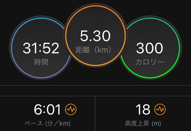 f:id:kina_tomo_yu:20190410212805j:plain