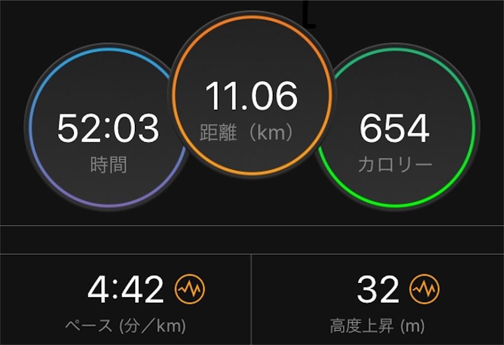 f:id:kina_tomo_yu:20190611073418j:image