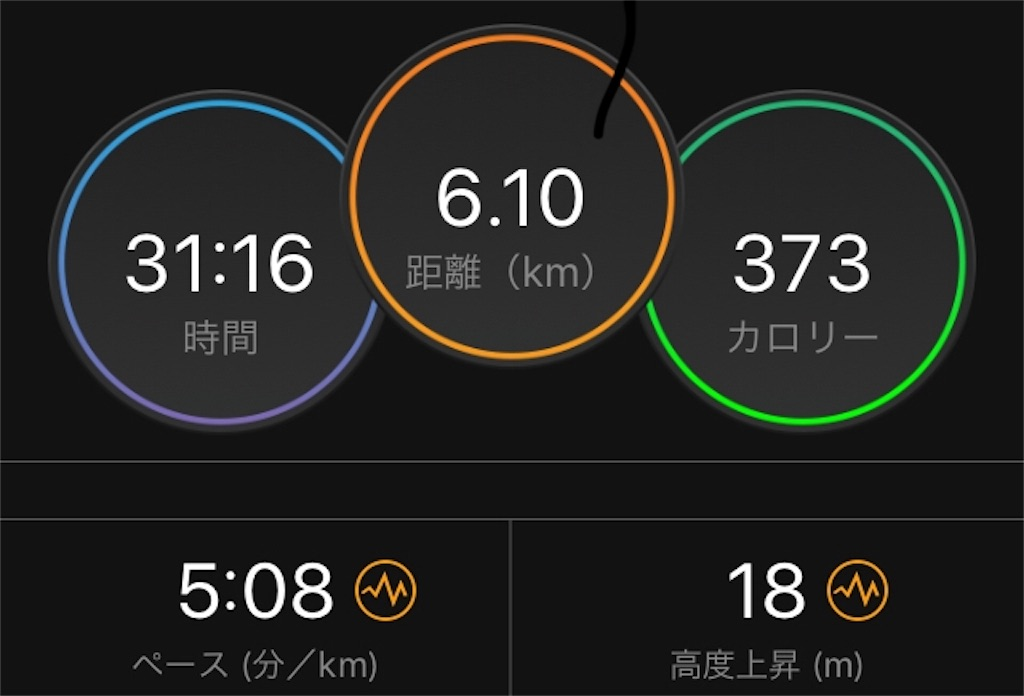 f:id:kina_tomo_yu:20190612080129j:image