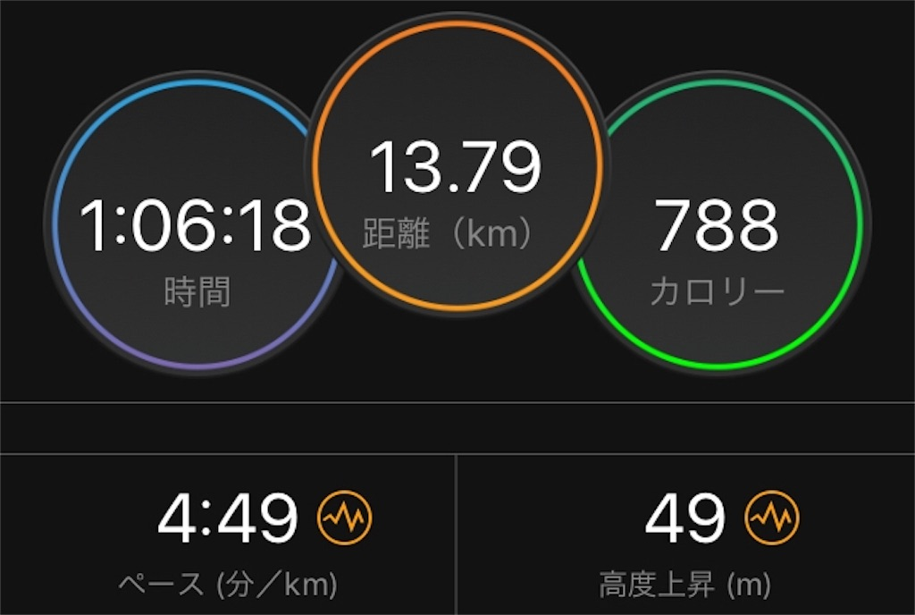 f:id:kina_tomo_yu:20190613075425j:image