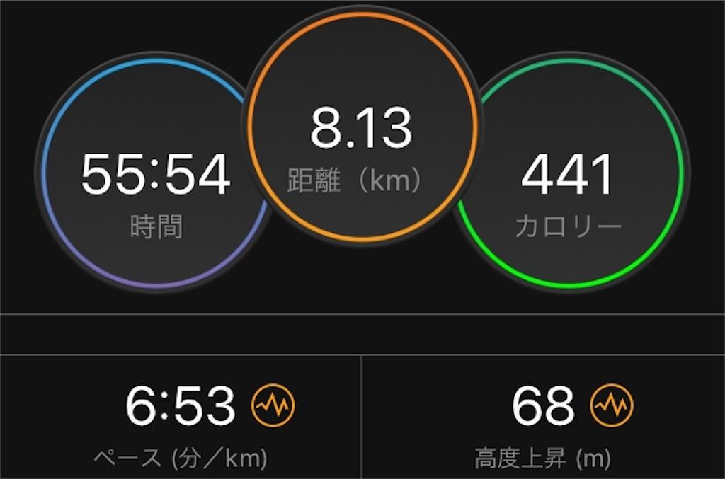 f:id:kina_tomo_yu:20190628074622j:image