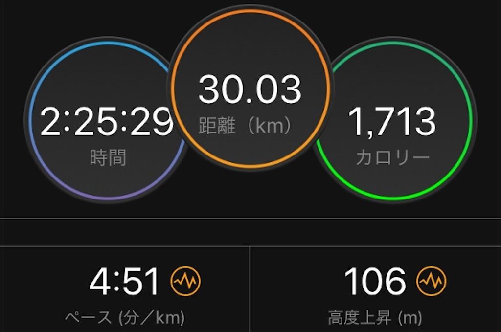 f:id:kina_tomo_yu:20190630093718j:image