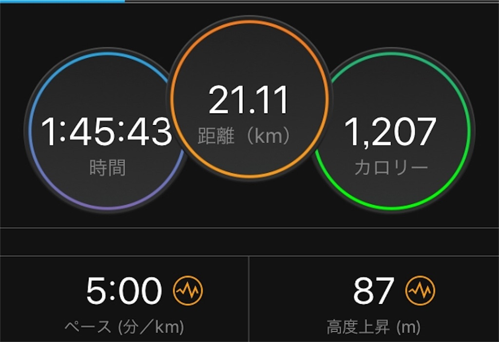 f:id:kina_tomo_yu:20190704101055j:image