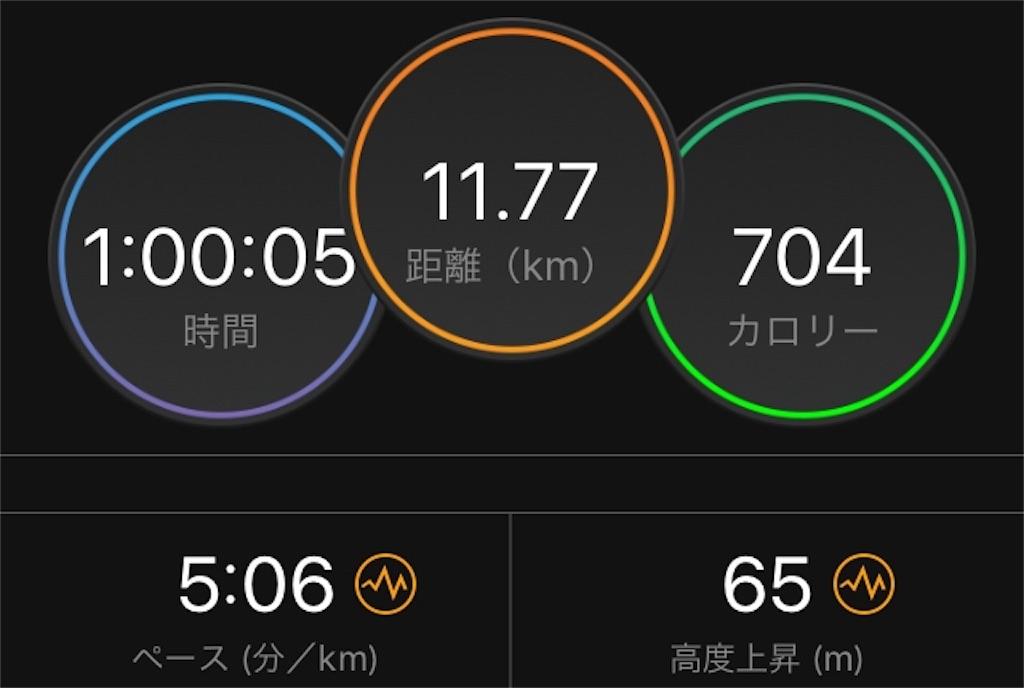 f:id:kina_tomo_yu:20190731074512j:image