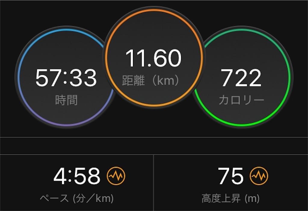 f:id:kina_tomo_yu:20190801073917j:image
