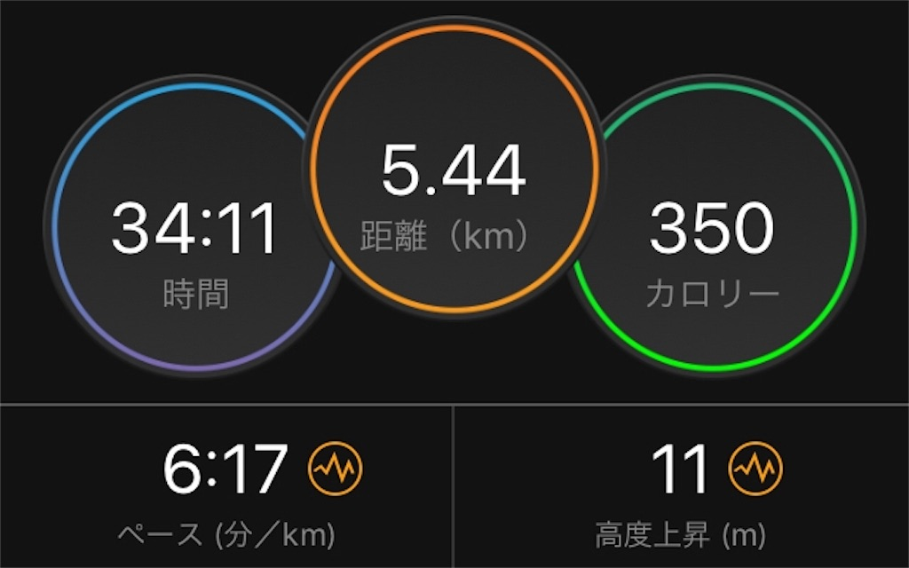 f:id:kina_tomo_yu:20191128213819j:image