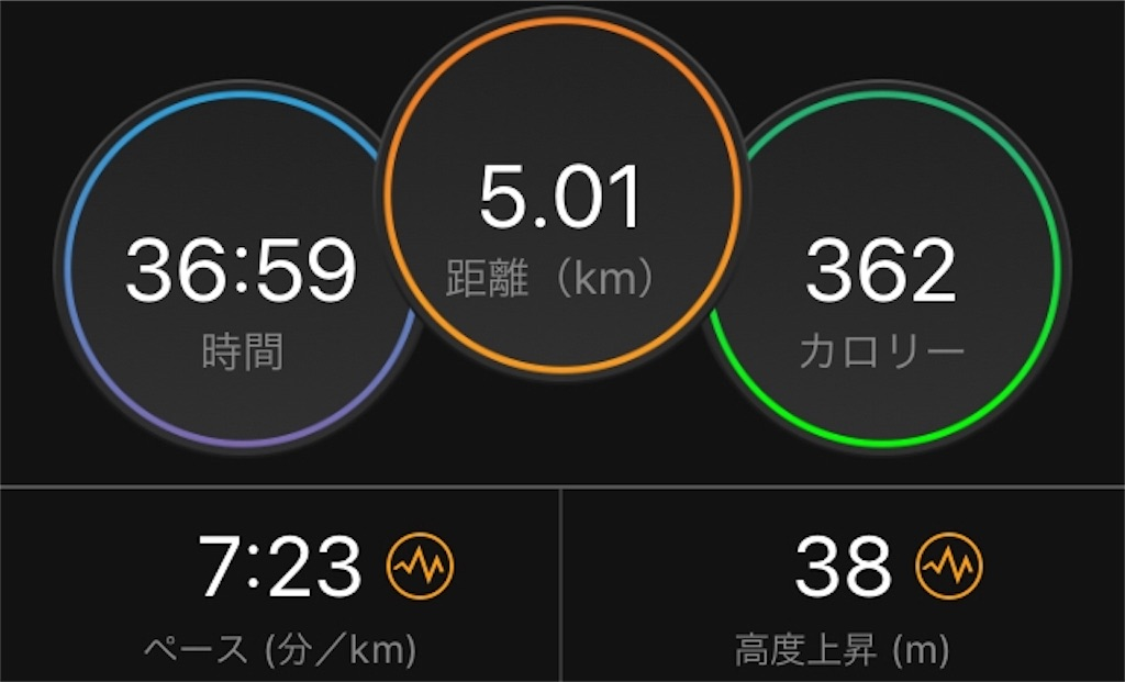f:id:kina_tomo_yu:20200109121451j:image