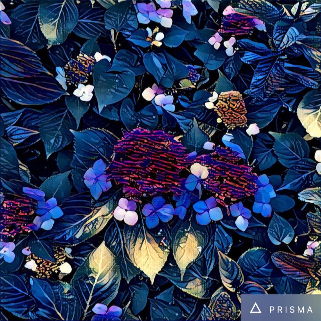 f:id:kinaco68:20160718210035j:image