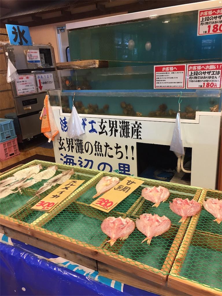 f:id:kinako-shifuku:20170228214727j:image