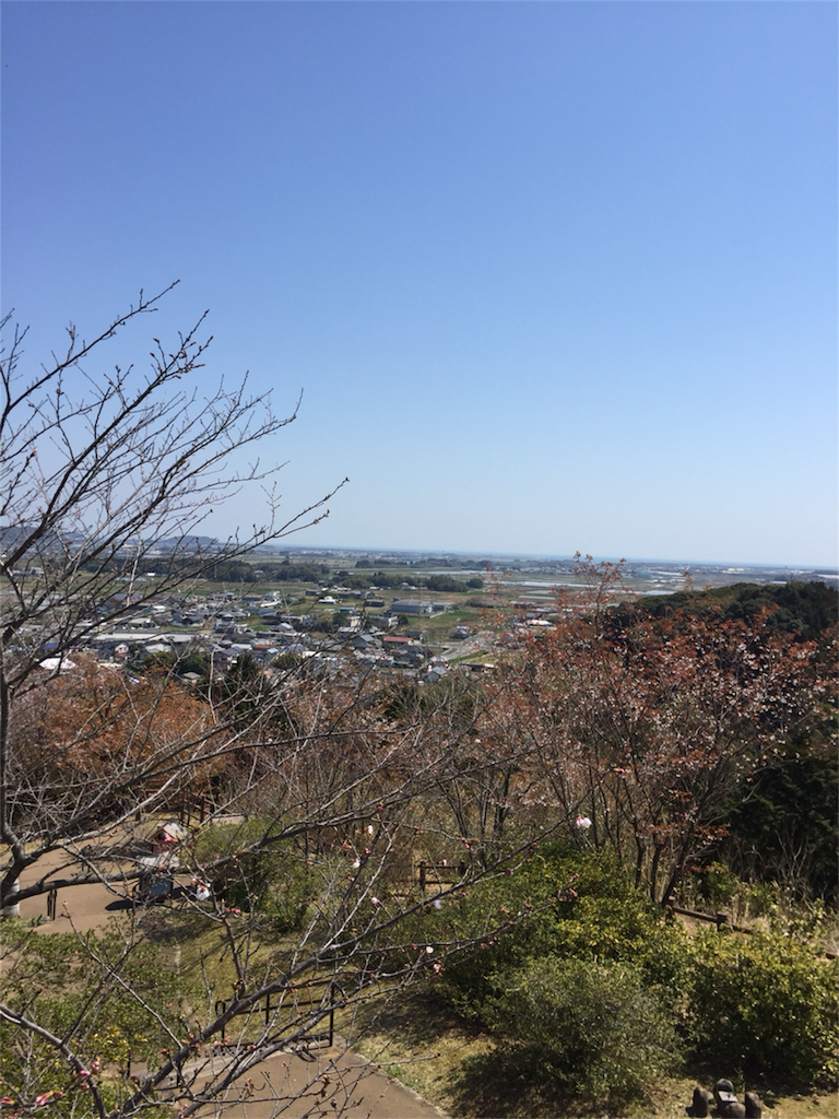 f:id:kinako-shifuku:20170404170137p:image
