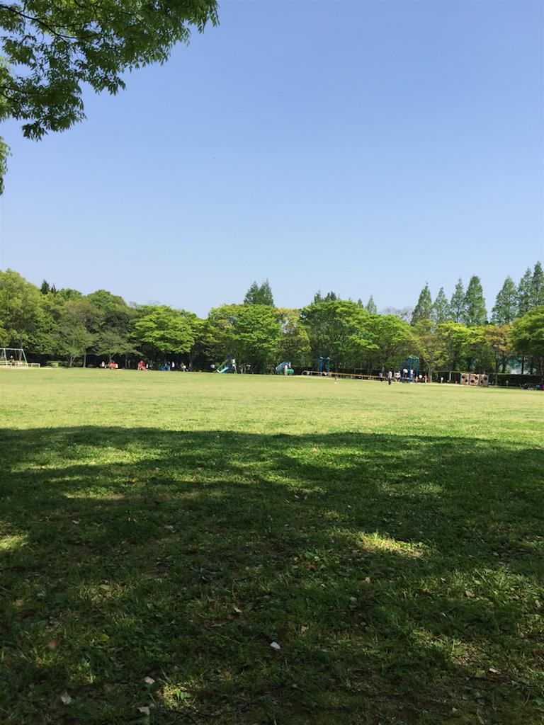 f:id:kinako-shifuku:20170430210912p:image