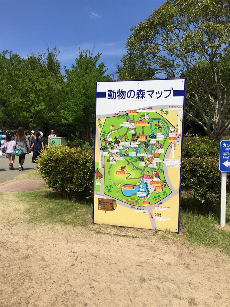 f:id:kinako-shifuku:20170504202420p:image