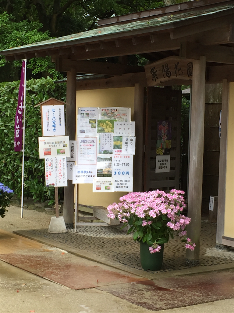 f:id:kinako-shifuku:20170607172051p:image