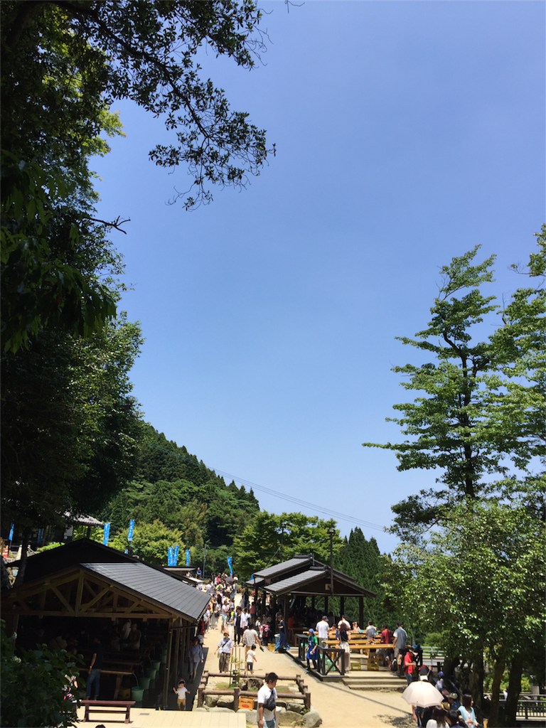f:id:kinako-shifuku:20170618144856p:image