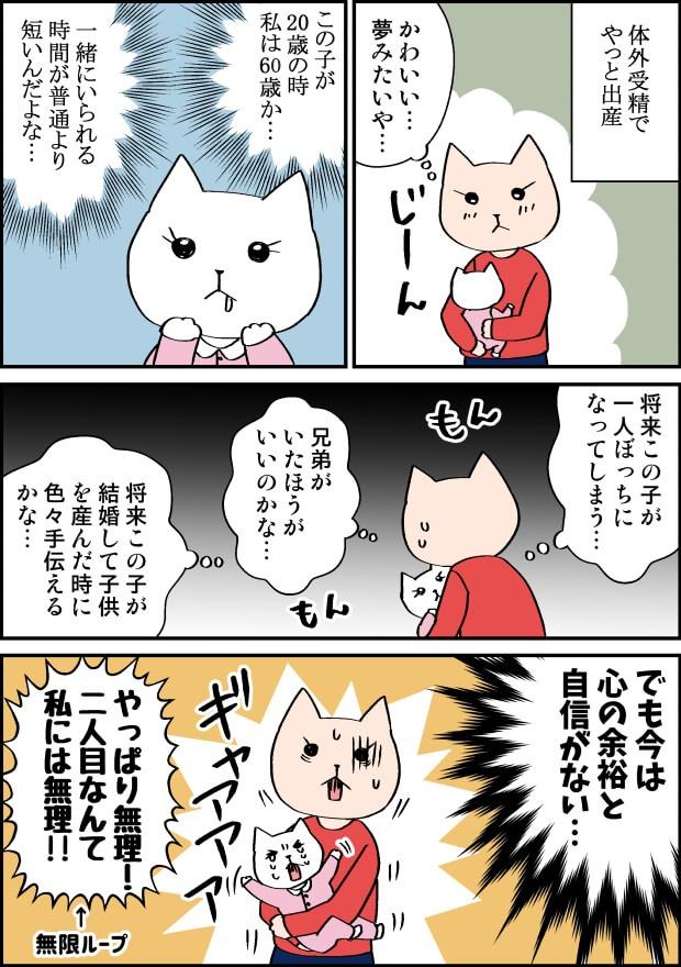 高齢出産の二人目の不安漫画