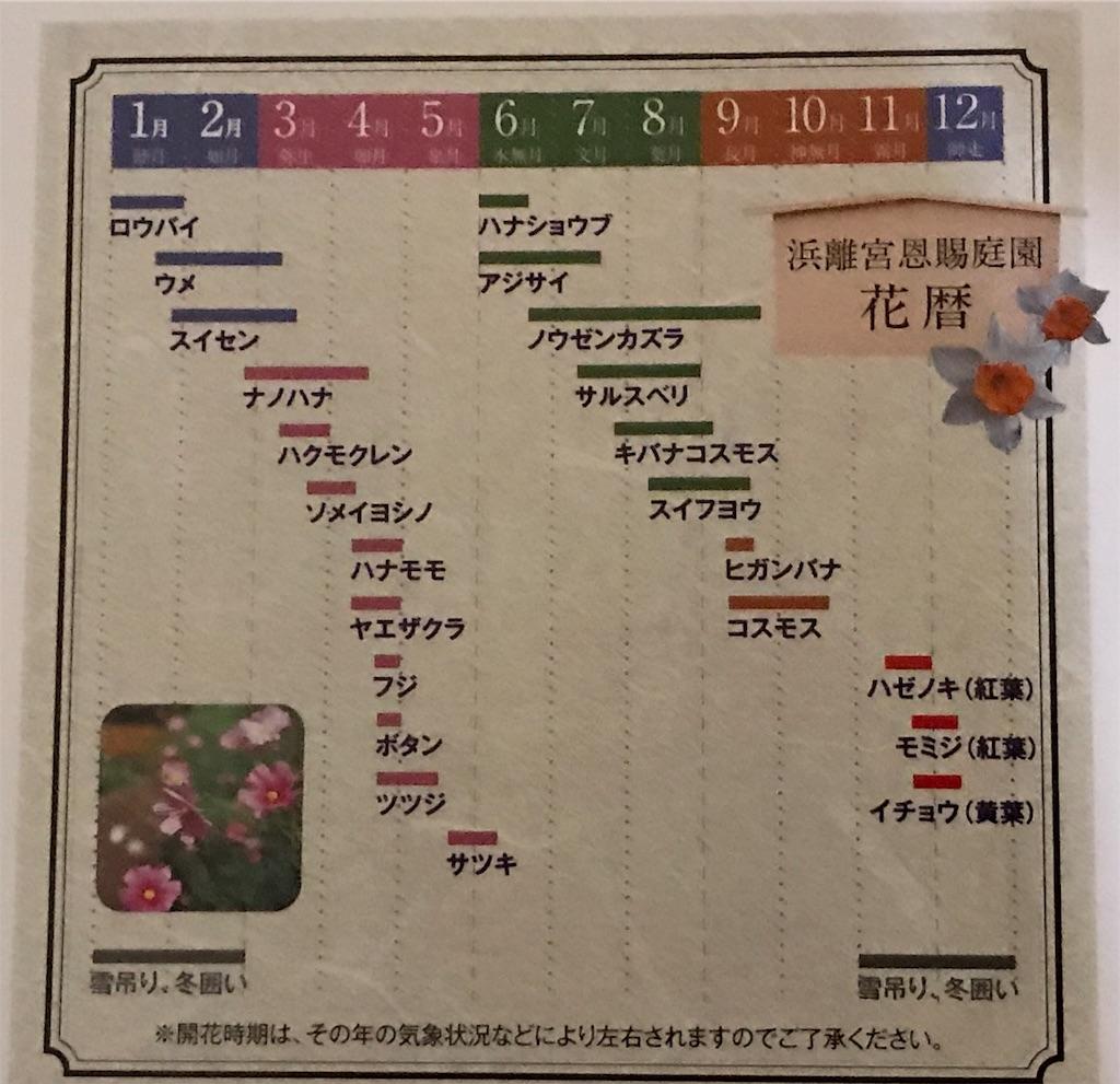 f:id:kinako97:20190127213538j:image