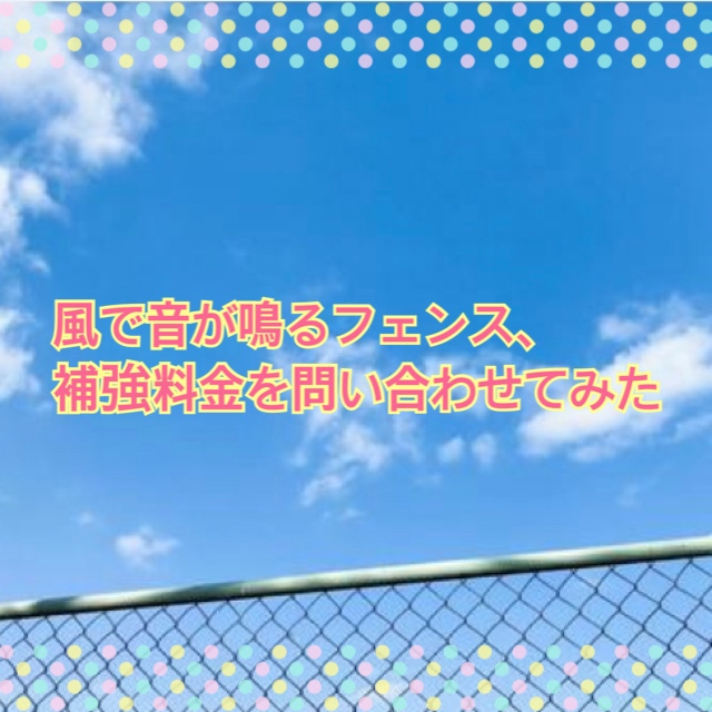 f:id:kinako_0128:20210412205655j:plain