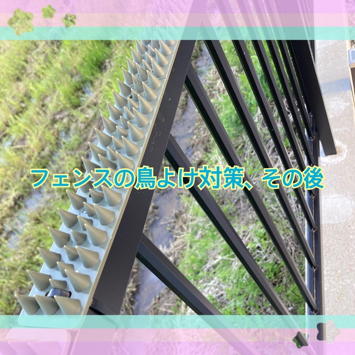f:id:kinako_0128:20210418205642j:plain