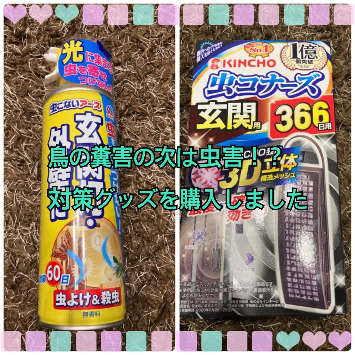 f:id:kinako_0128:20210601225833j:plain