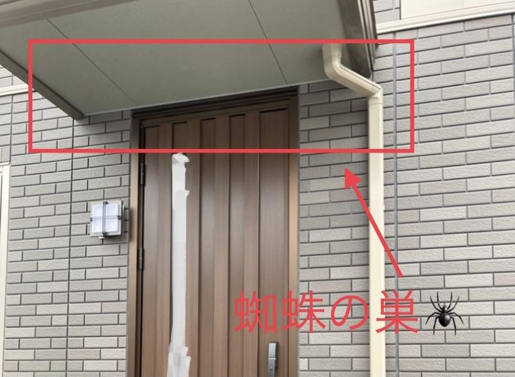 f:id:kinako_0128:20210703205509j:plain