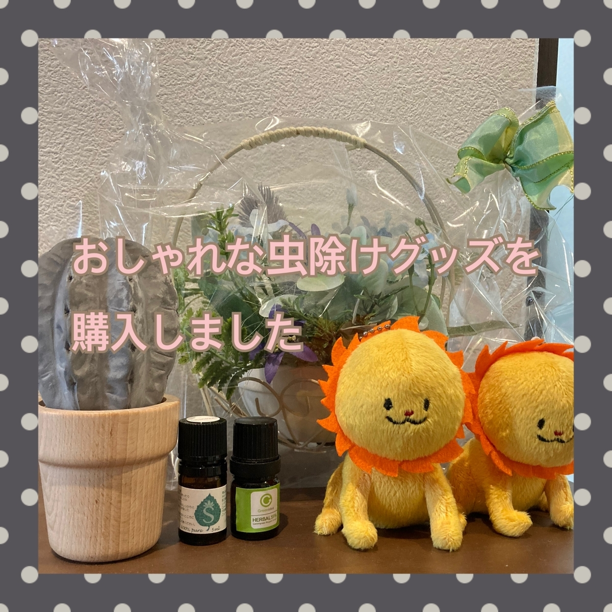 f:id:kinako_0128:20210724233305j:plain