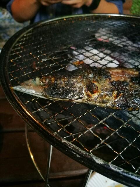 f:id:kinako_yuta:20161003102935j:image
