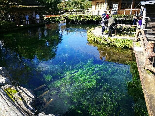 f:id:kinako_yuta:20161003103526j:image