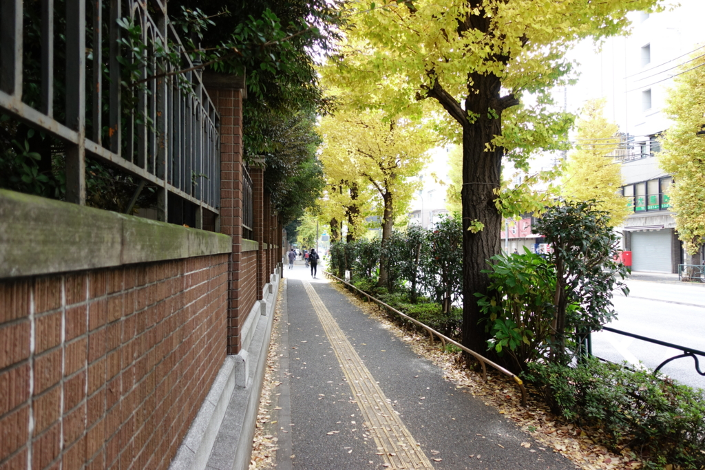 f:id:kinako_yuta:20161204142809j:plain
