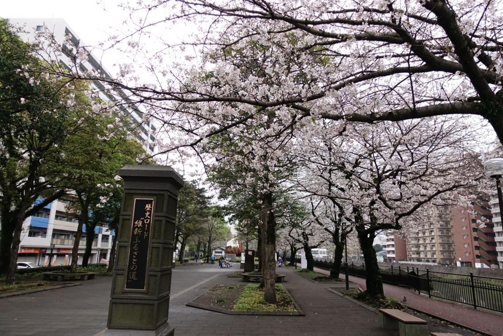 f:id:kinako_yuta:20170409204558j:plain