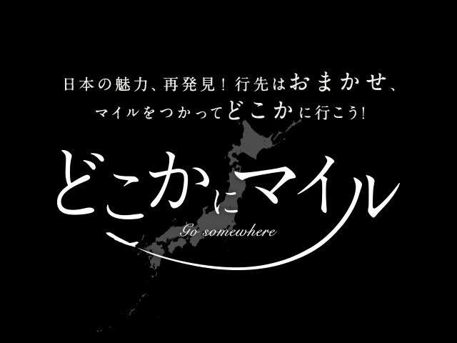 f:id:kinako_yuta:20170411095835j:image